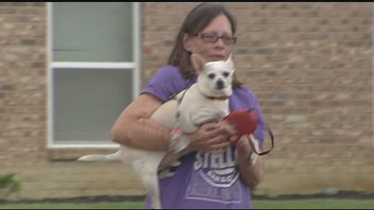 What began as a late night walk with her pet chihuahua ended with a frantic call to 911.