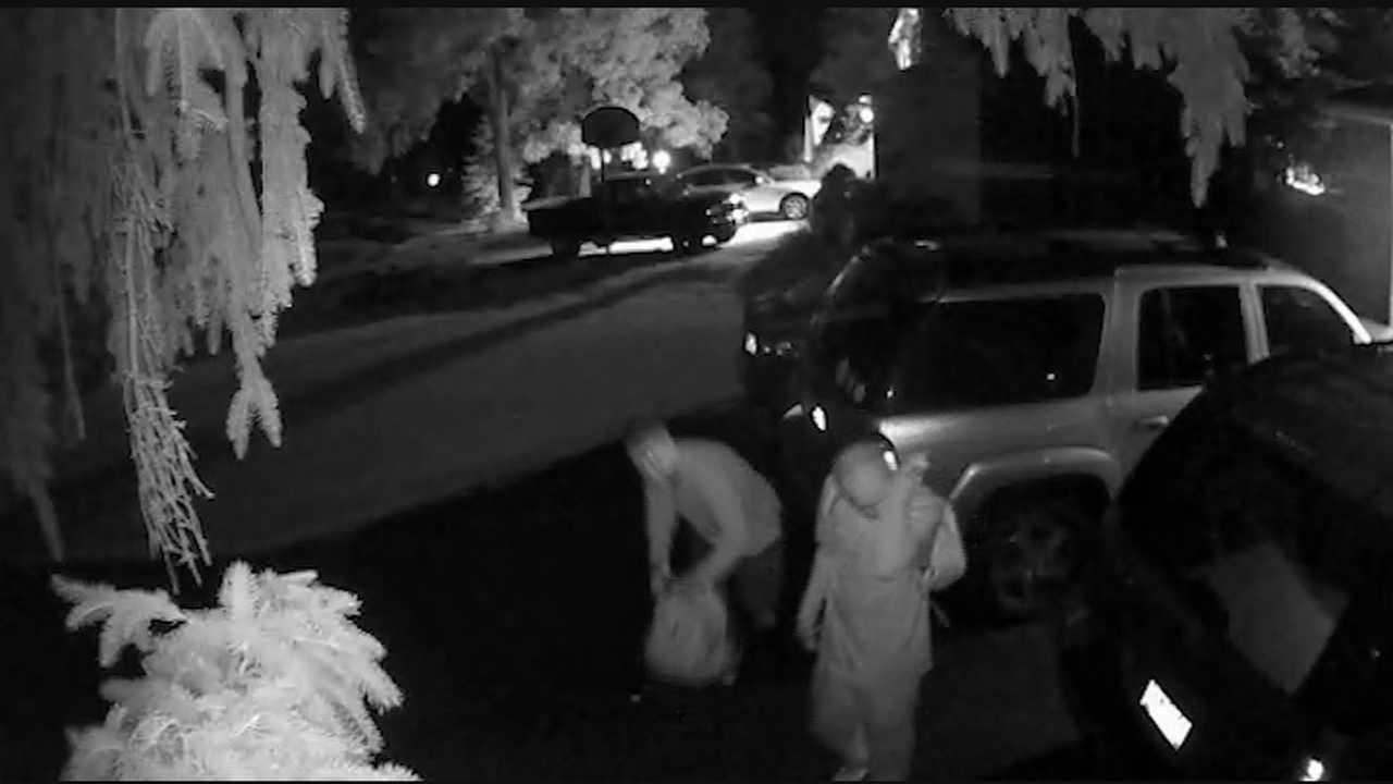 The men were caught on camera, breaking into cars along Cinnamon Woods Drive in the early hours of Tuesday morning.