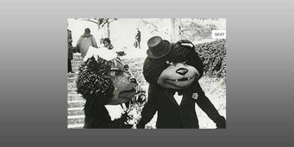 1976Photo via University of Cincinnati