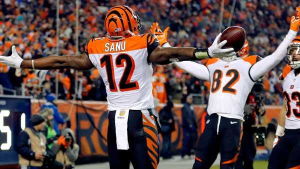 Mohamed Sanu, AP photo