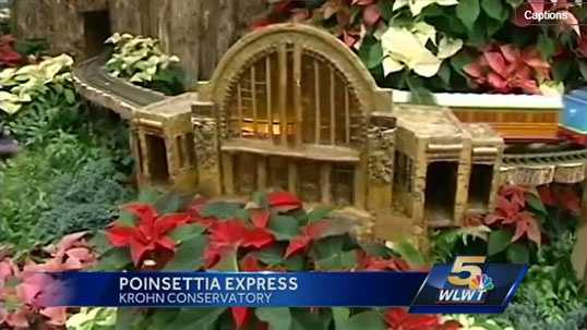 The poinsettias have blossomed and are losing their chartreuse glow. Take your last whiff of the floral show and all the other fun holiday elements at the Krohn Conservatory's this weekend. The last day to enjoy it is Sunday.More information can be found here