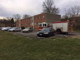 The Cincinnati SPCA responded to an apartment fire after it was reported an animal may have gone missing March 7, 2016.