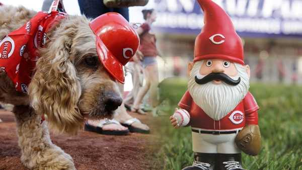 Dogs, Garden Gnomes And Baseball Cards: Deals And Giveaway At GABP This  Homestand