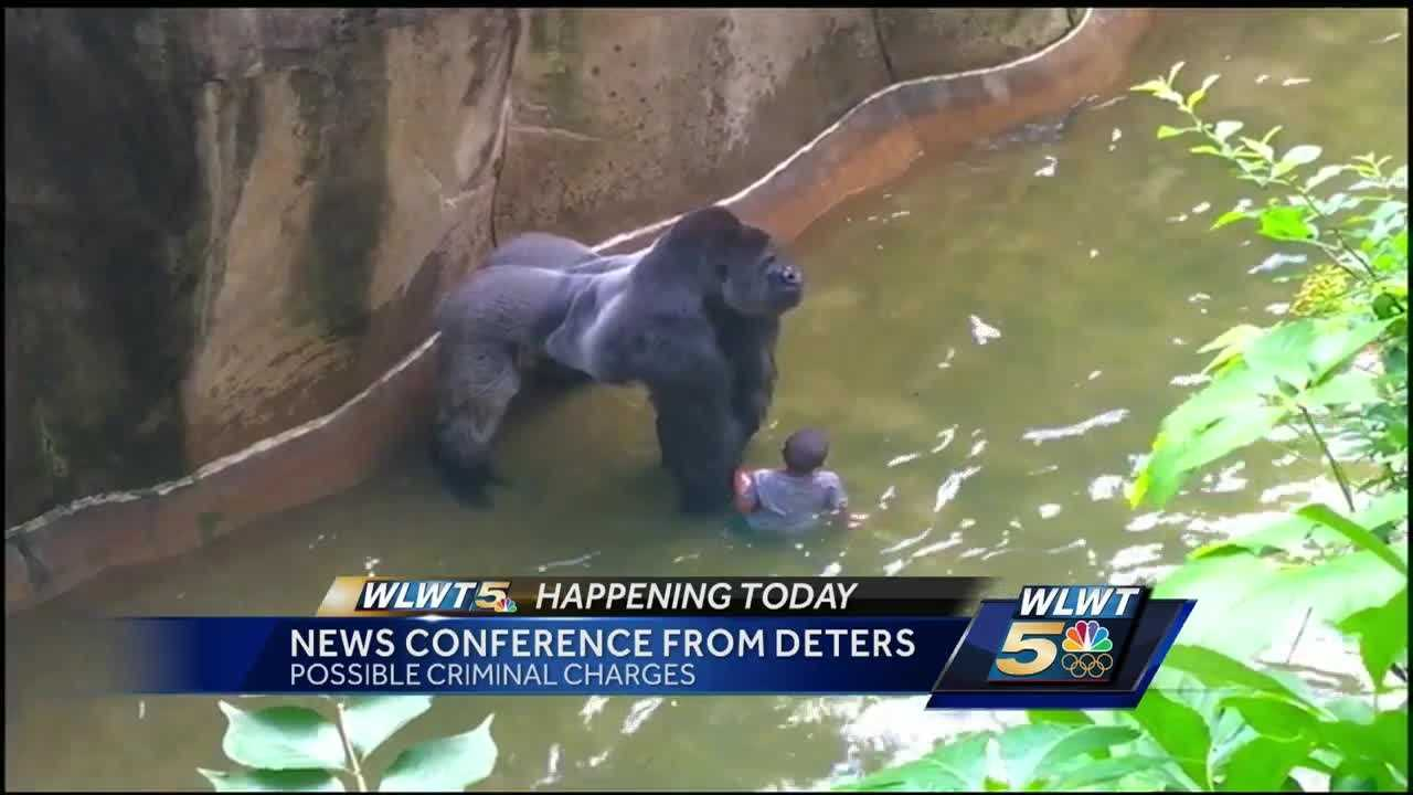 Joe Deters will say if a woman faces charges for an incident that ended with the death of a Cincinnati Zoo gorilla.