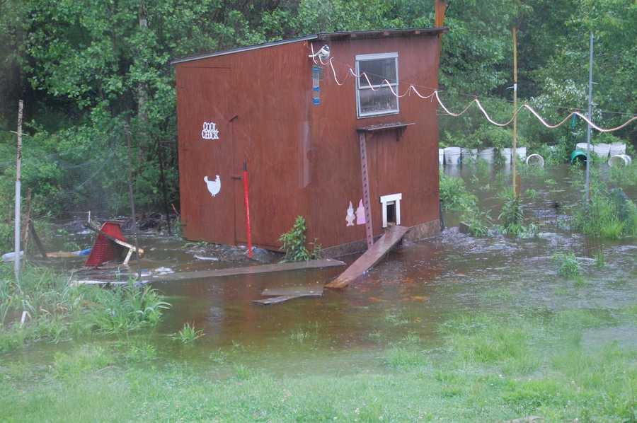 The rain has flooded this backyard in Trevett