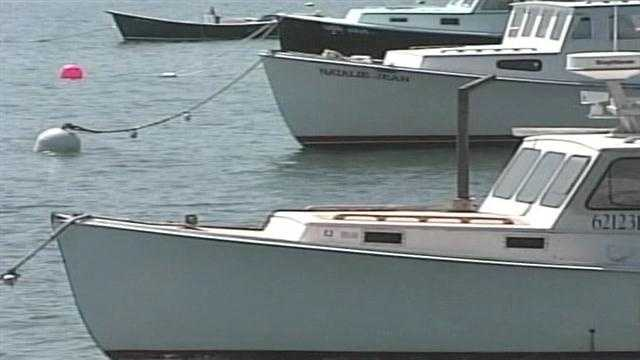 News 8's Aly Myles reported on how Maine lobstermen are dealing with low lobster prices. Lobsters are being sold for less than $4 a pound in many places. Click here for the story.