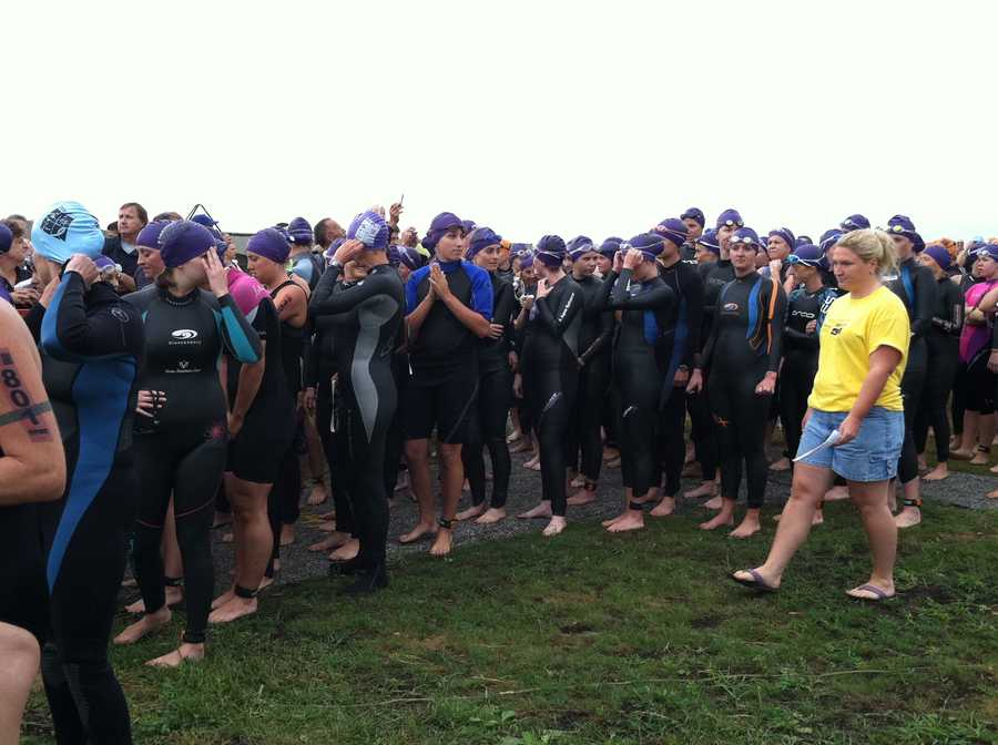 Swimmers prepare for the race to begin.