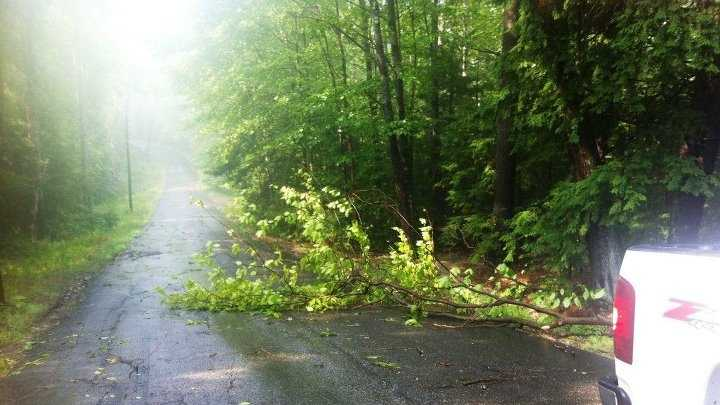 There were 15-20 trees that came down blocking several roads in town.
