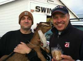 News 8's Norm Karkos poses for a picture with Mike Willette of Brookside Farms and one of his goats.