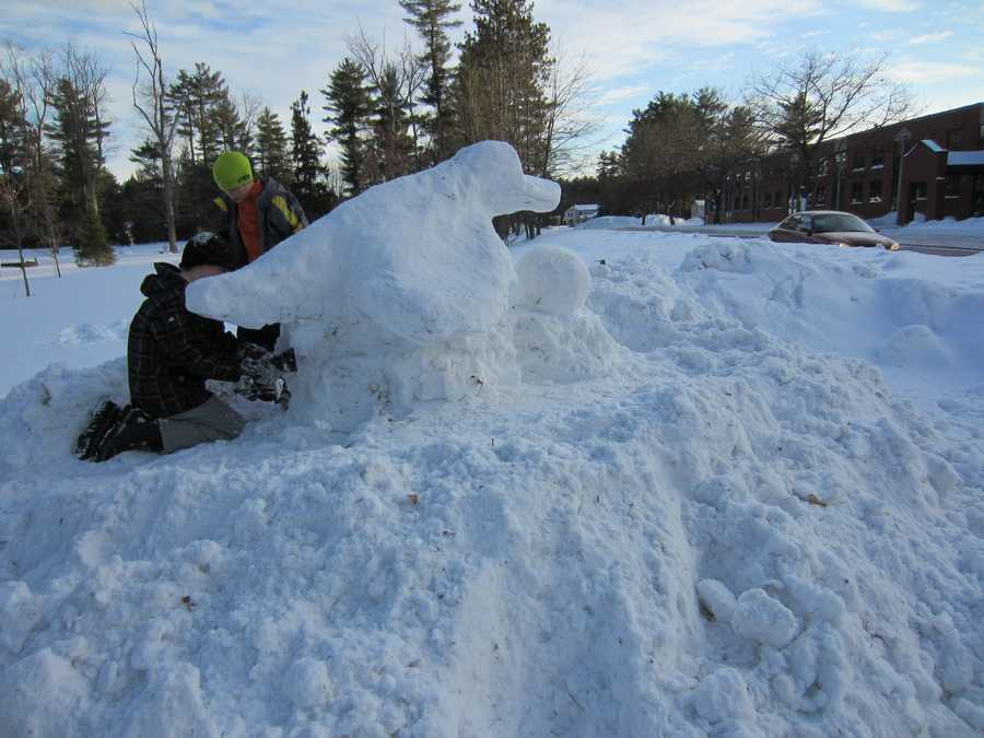 This snow sculpture of a platypus placed second in the contest.