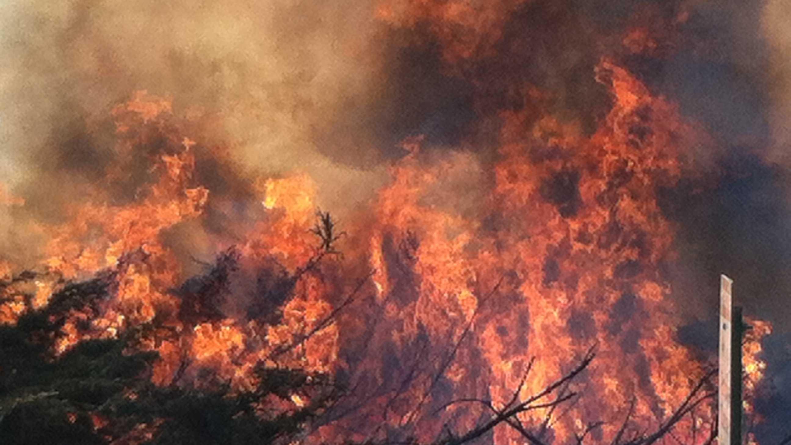 Portland Brush Fire