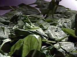 Frozen spinach can contain up to 50 or more aphids, thrips and/or mites per 100 grams before being deemed defective.