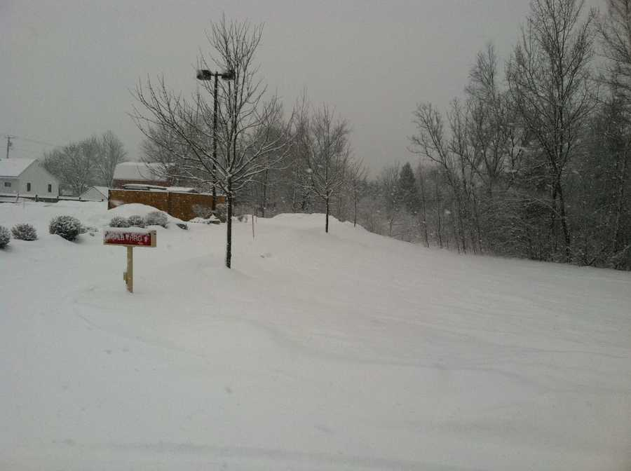 Sunday's nor'easter is dumping heavy, wet snow on the area. Click through for pictures from the storm.