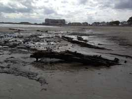 Kennebunk Town Manager Barry Tibbetts said it is a safety concern and any exposed stumps need to be removed.