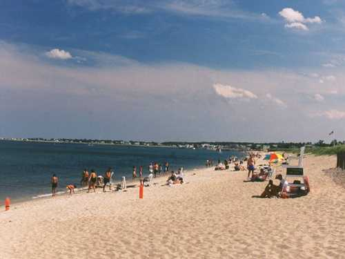 10. Ferry Beach State Park in Saco contains the northernmost stand of tupelo trees in the U.S.