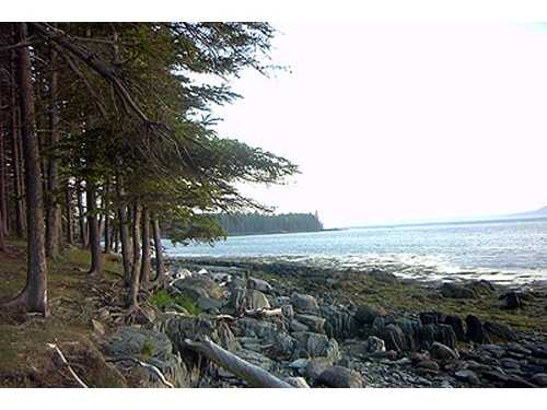 11. The only Maine state park with offshore camping is Warren Island State Park.
