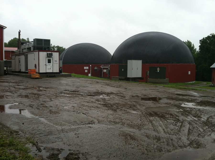 It all ends up inside giant dome digesters, where it forms power-producing methane gas.