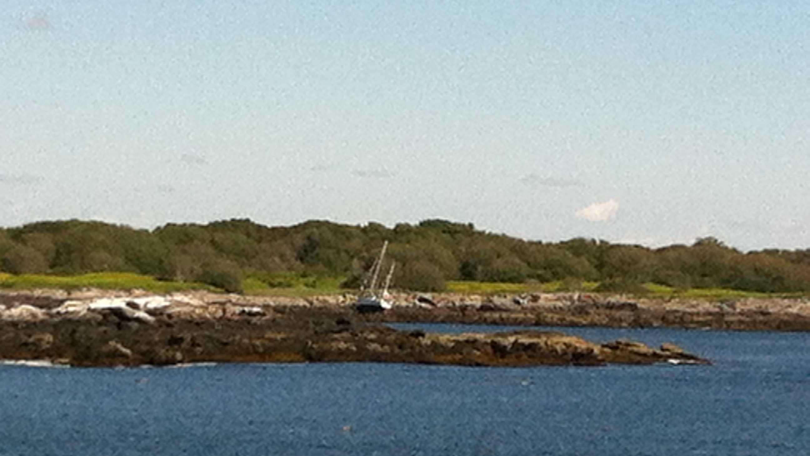 sail boat fail.JPG