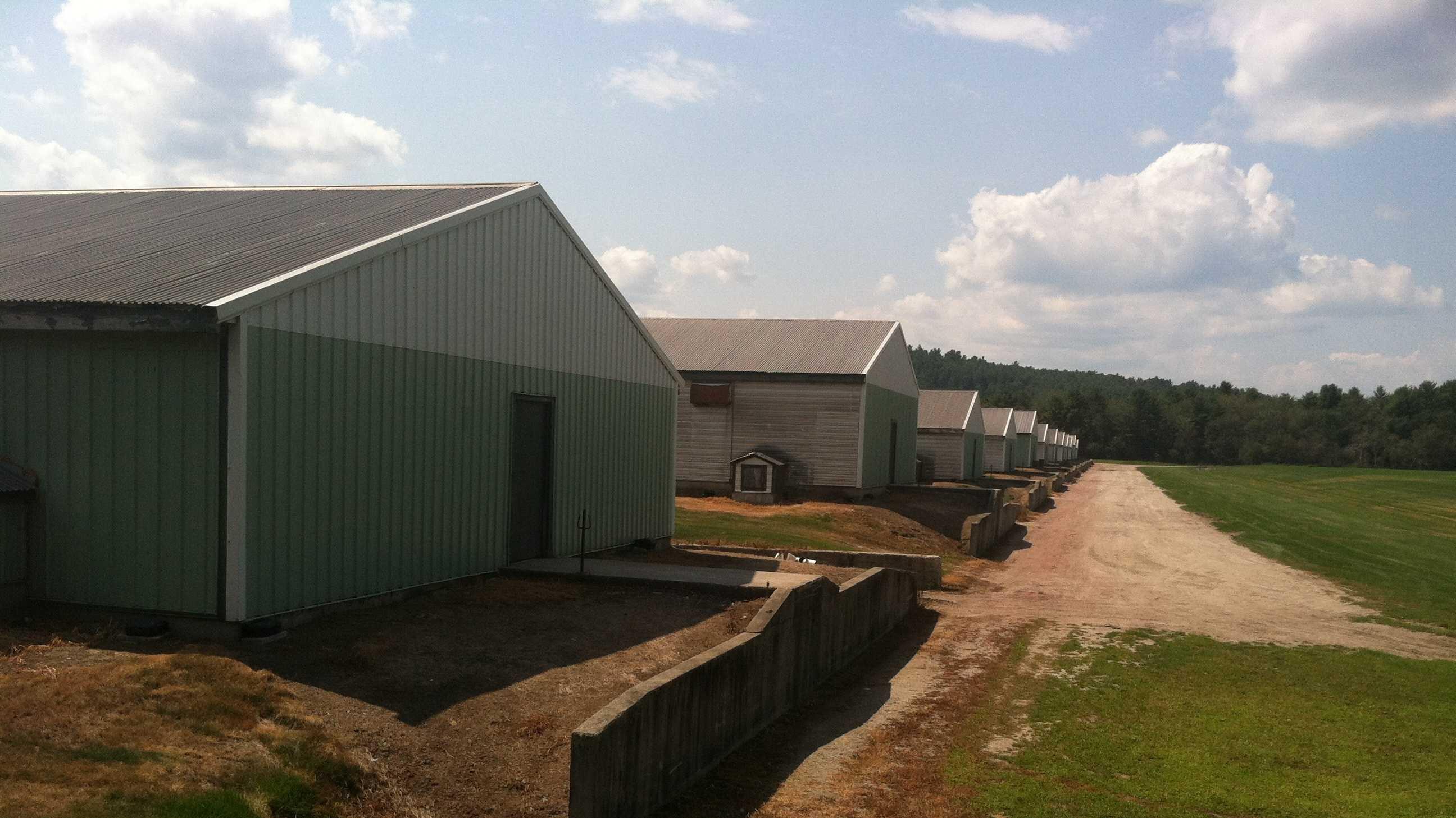 Turner Egg Farm.JPG