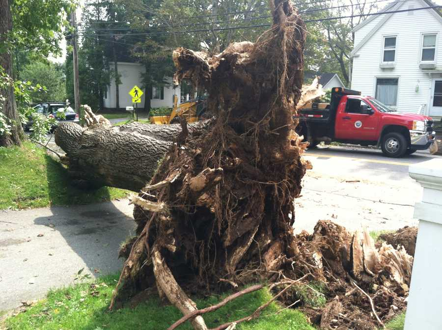 The town of Camden took the brunt of powerful thunderstorms that moved across Maine on Wednesday. Click through for pictures of the damage.
