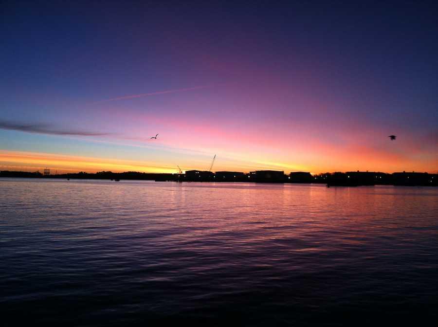 Portland Harbor, January 2013
