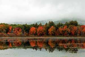 Fall foliage season is in full swing across New England. Check out the top 10 spots to view the colors according to travel site TripAdvisor. The list is based on traveler reviews.