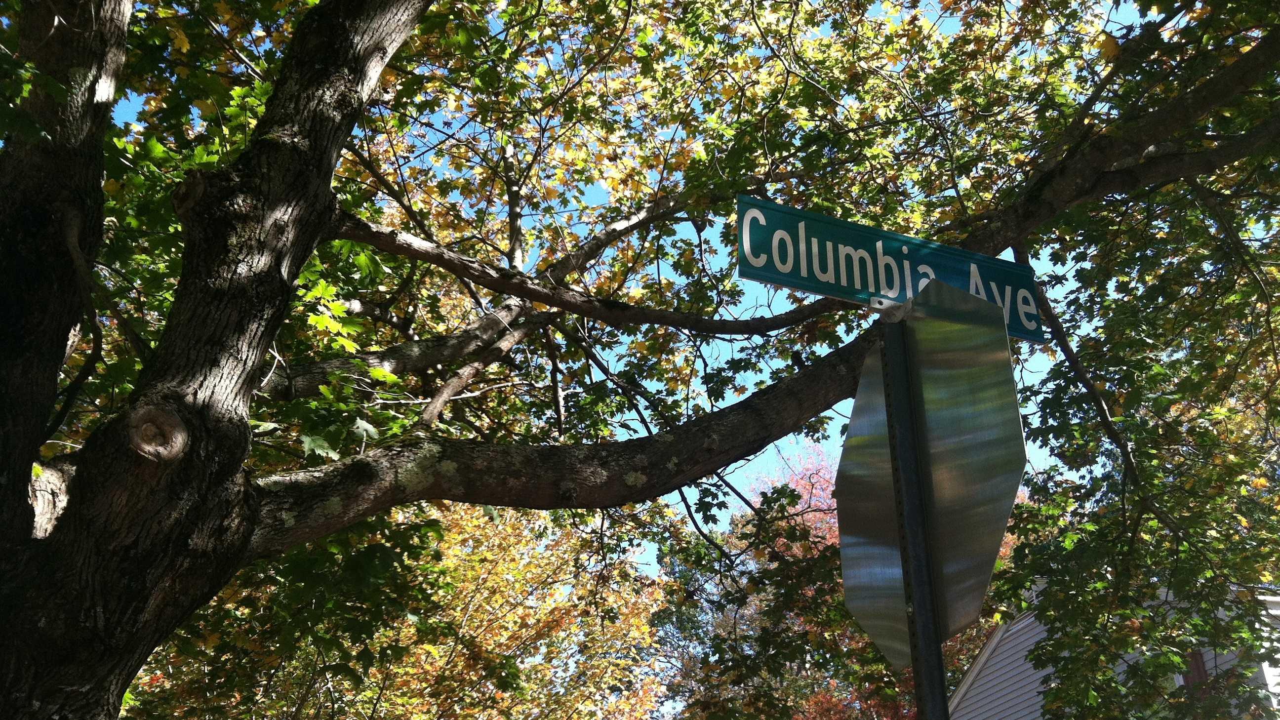 Columbia Ave Brunswick.JPG