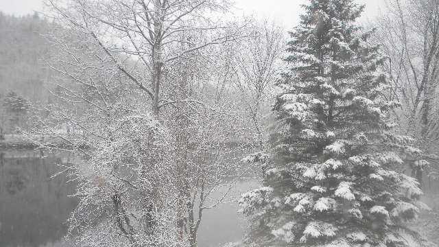 Maurine Snow.jpg