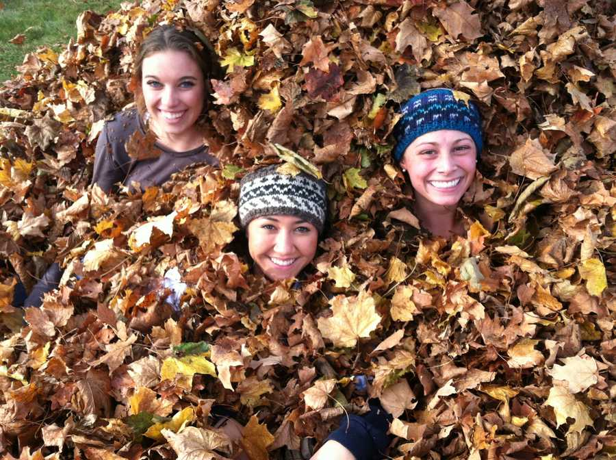 The students took part in a fall cleanup project at the Evergreen Cemetery on Stevens Avenue.
