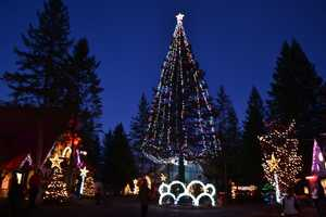 The holiday season has arrived. Click through to check out some of the festivals and events going on in your area.