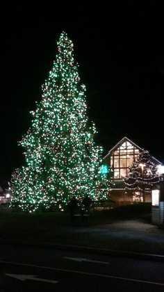 Freeport Sparkle Weekend, December 4-6 Freeport Village. Click here for more details.