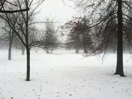 Fog in Saco Monday morning