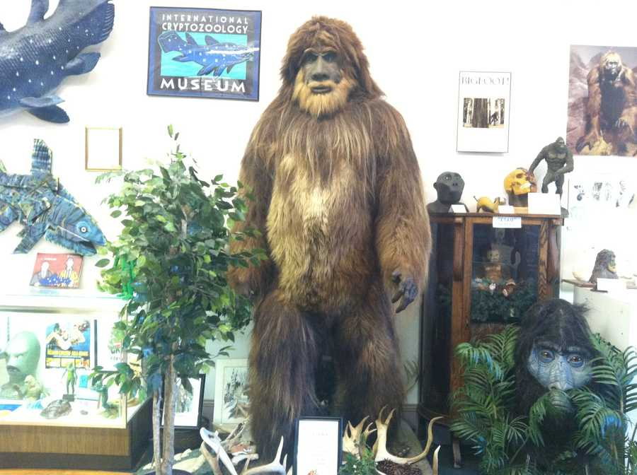Did you know there is a museum in Portland dedicated to cryptozoology?  Click through for more pictures from the International Cryptozoology Museum.