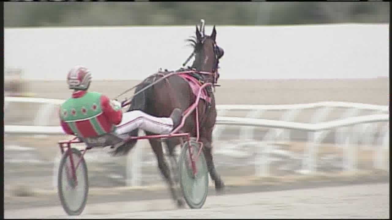 img-Horses back on the track for Scarborough Downs Opening Day