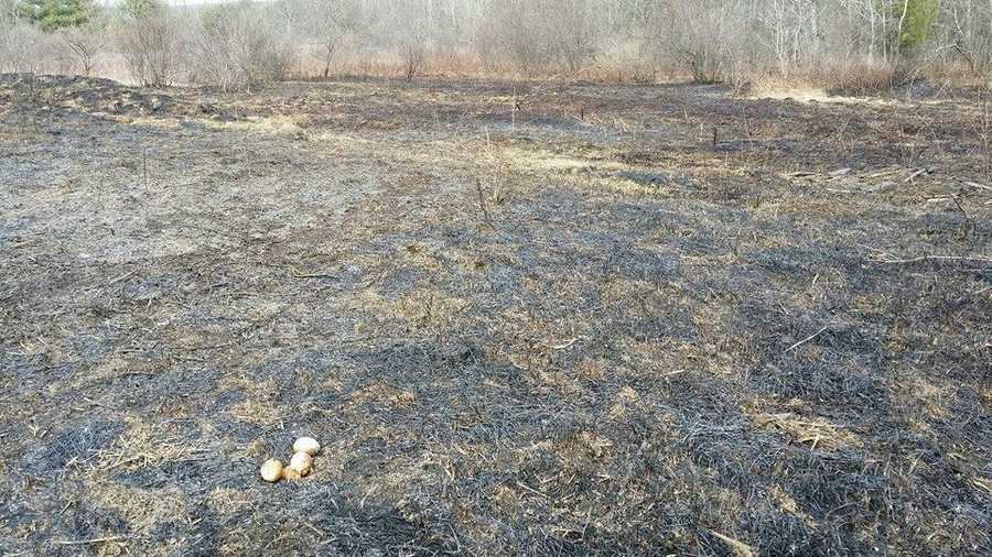 Lewiston Brush Fire