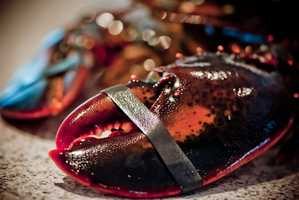 There are two kinds of lobsters that exist in U.S. waters, the American lobster and the spiny lobster.