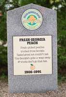 Fresh Georgia Peach1986 – 1991Vanilla Ice Cream with Fresh Georgia Peaches.