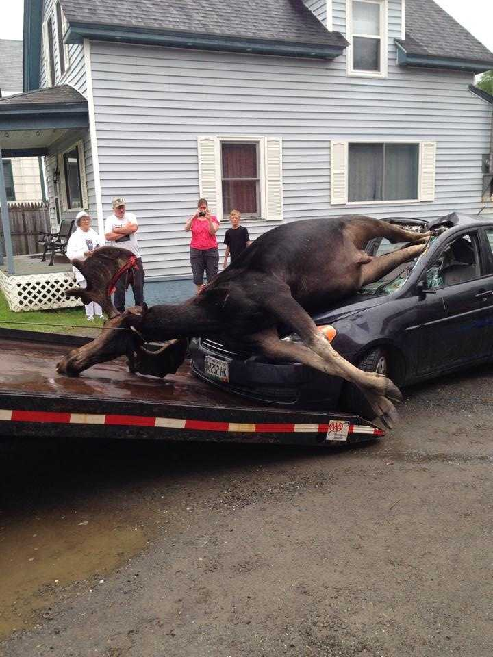 A Piscataquis County Sheriff's Office Dispatcher said the driver was taken to a hospital.