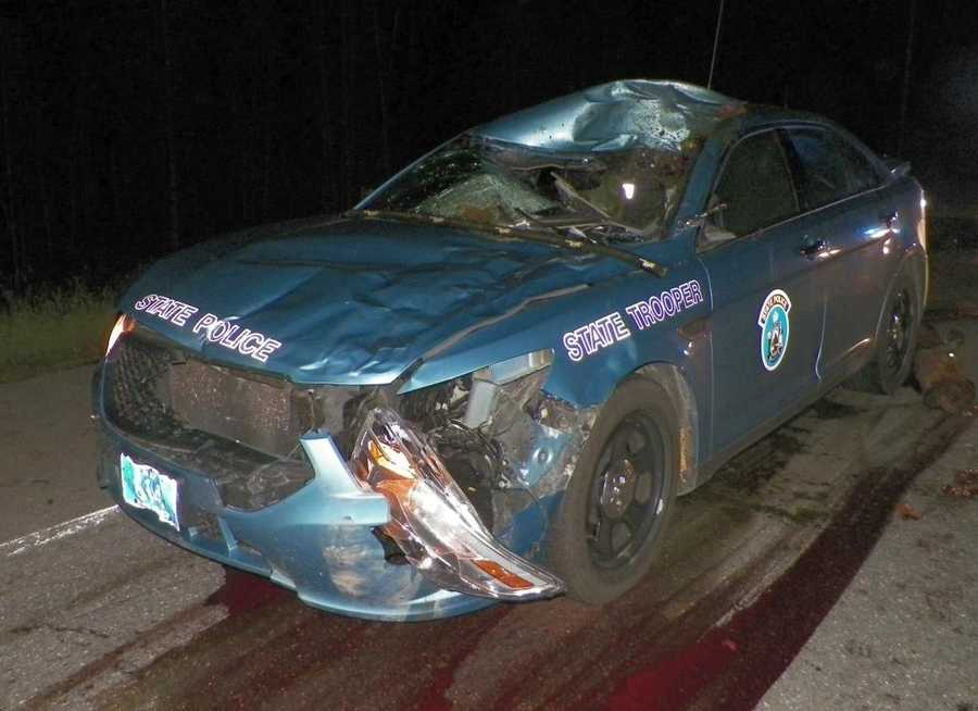 A Maine State Police trooper was injured after colliding with a moose in northern Maine late Tuesday night. The cruiser was totaled. Click through to see more photos of the damage.