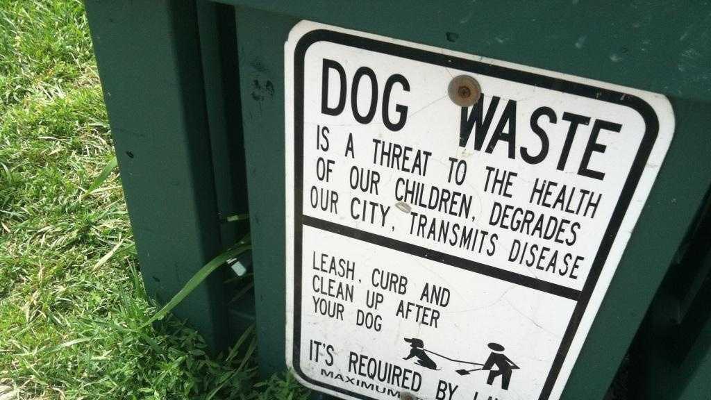 Dog Waste Sign.JPG