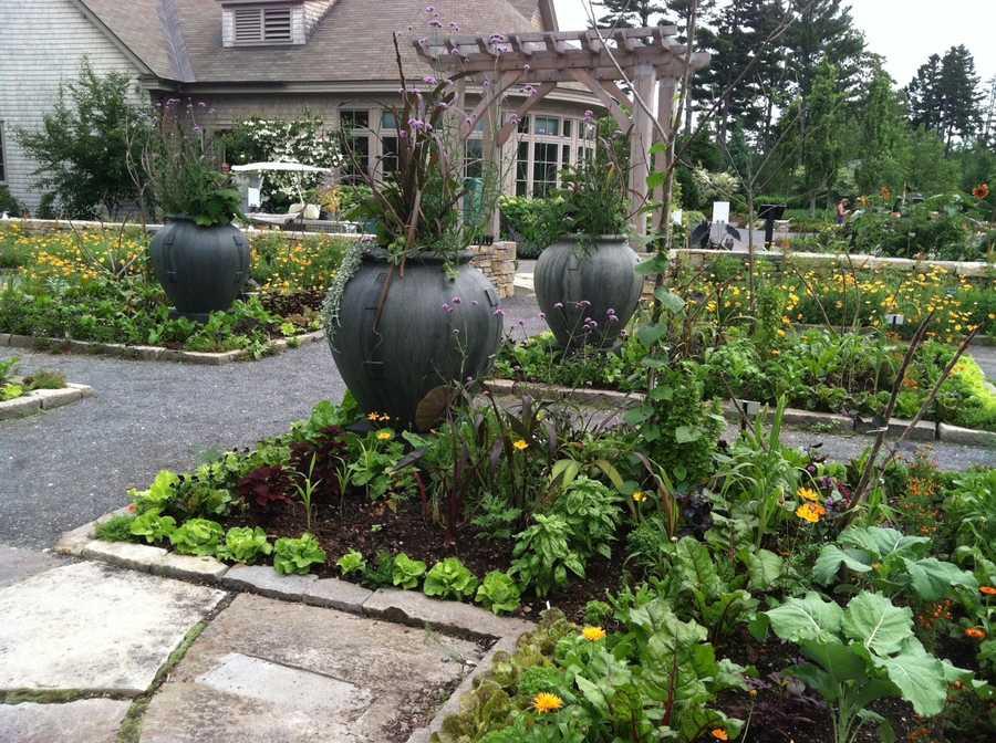 Visit the Coastal Maine Botanical Garden.