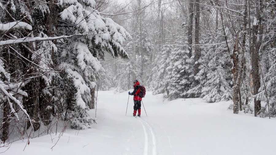 Go skiing, whether it is cross country or downhill