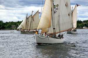 Try a Windjammer Cruise