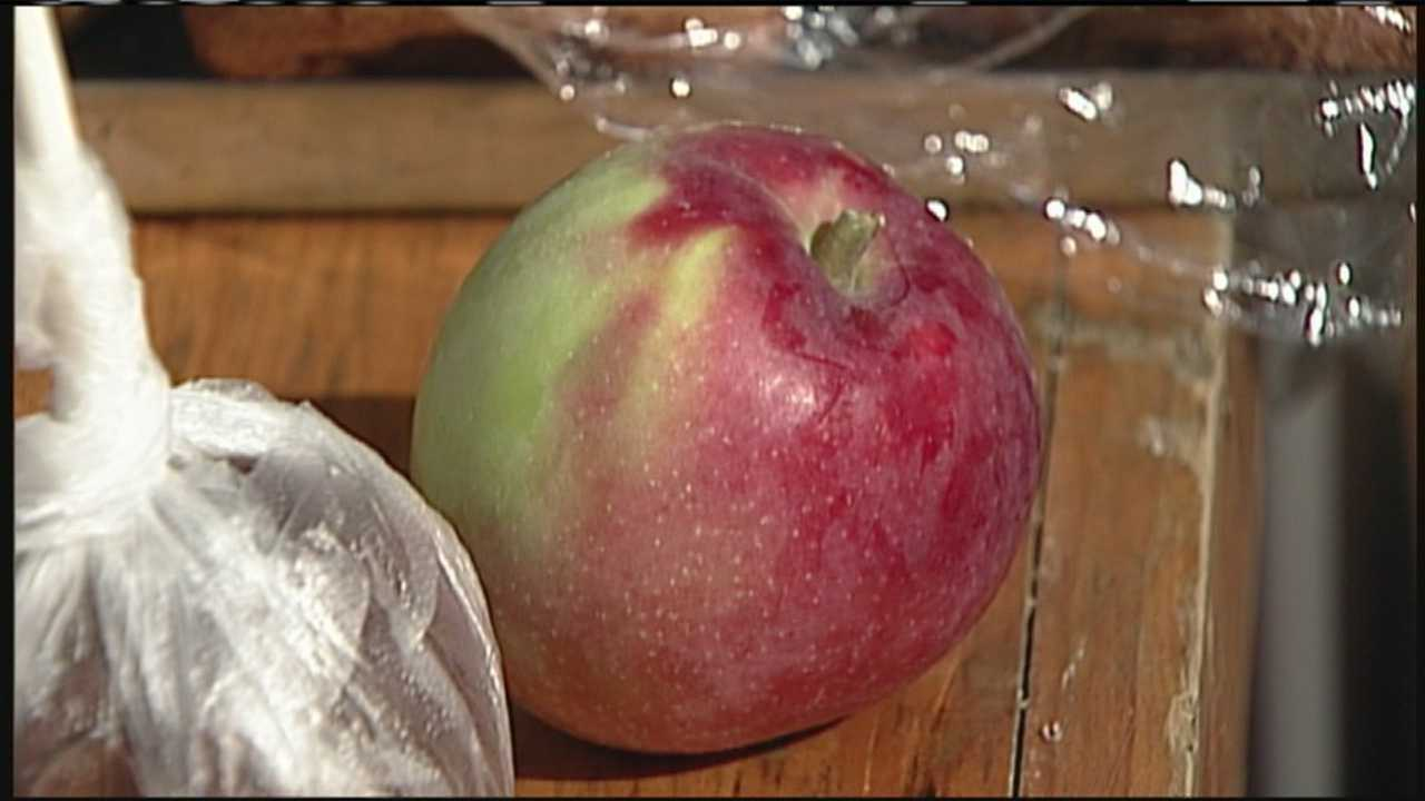 The Cornish Apple Festival celebrated 25 years Saturday, as well as one of Maine's signature fall crops.