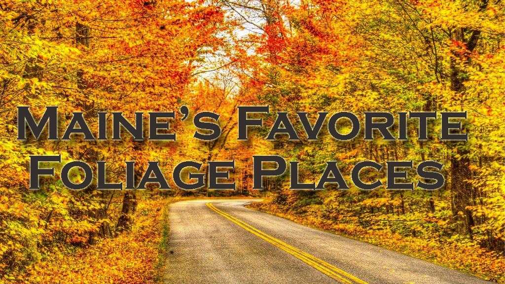 We asked you for your favorite places to view the fall foliage in Maine. Here are some of your responses. A reminder, if you have a favorite foliage photo, share it on u local.