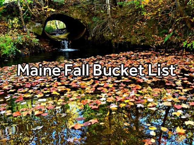 While we all love summer, fall is a great time of year here in Maine. Check out our bucket list of things to do during autumn.