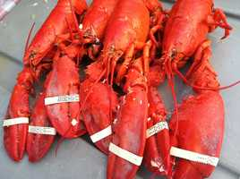 July 29: Maine Lobster Festival begins.