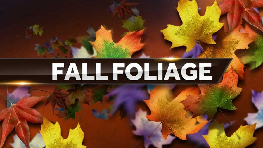 Sept. 23: First day of fall.