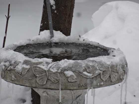 Snow and ice surround a bird bath/water cooler in Baldwin.