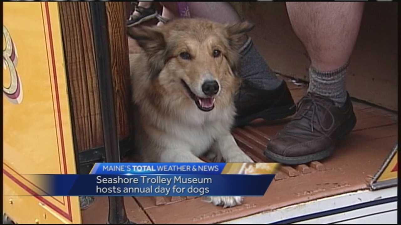 Kennebunkport's Seashore Trolley Museum hosted dogs, and their owners, for its annual Dog Day on Sunday.